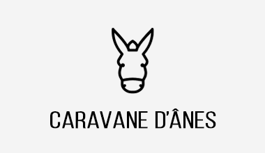 incentive team building randonnée caravane d'anes