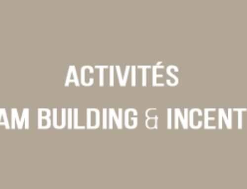ACTIVITÉS TEAM BUILDING & INCENTIVE